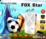 fox star.jpg
